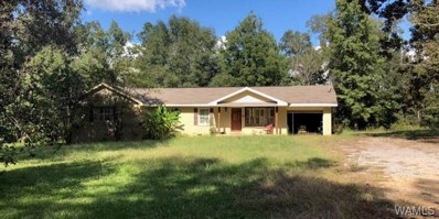 15337 Strawberry, Northport, AL 35475 - #: 130271