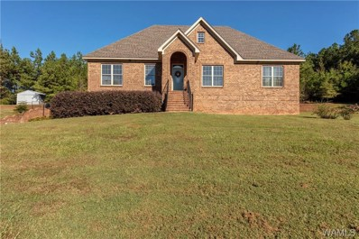 20534 Cathedral, Mccalla, AL 35111 - #: 130323