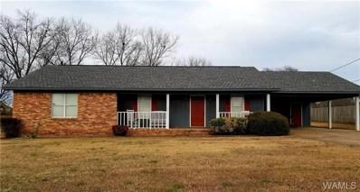 14305 Ashley Way, Tuscaloosa, AL 35405 - #: 130965