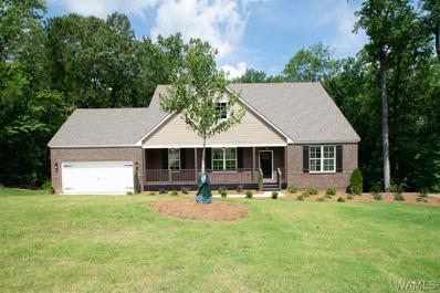 13780 Brandon James Avenue UNIT 75, Northport, AL 35475 - #: 131038