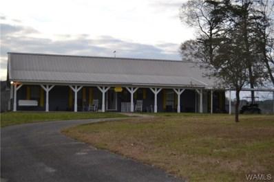 14850 Riverview, Brookwood, AL 35444 - #: 132184