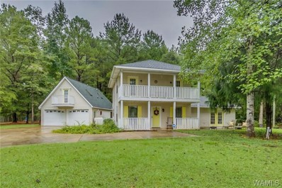 16787 River Shores, Northport, AL 35475 - #: 132624
