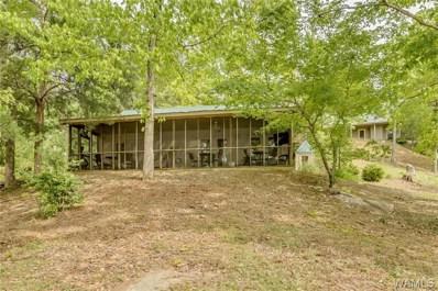 13420 Howse Camp, Tuscaloosa, AL 35406 - #: 132684
