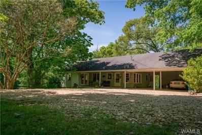 13888 Howell Camp, Brookwood, AL 35444 - #: 132885