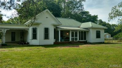 80 Chandler, Moundville, AL 35474 - #: 132938