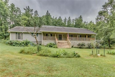 16760 Northfork Farm, Northport, AL 35475 - #: 133479