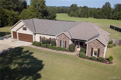 12650 Country Club, Northport, AL 35475 - #: 135011