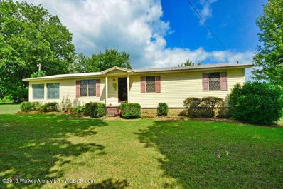 58 County Rd 3909, Arley, AL 35541 - #: 18-1540