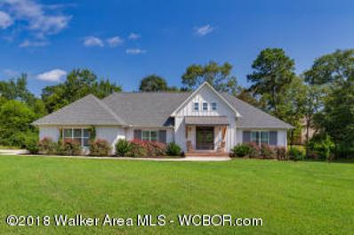 2383 Creekside Dr, Jasper, AL 35503 - #: 18-1668