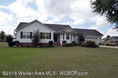 260 Summerville Estates Circle, Jasper, AL 35503 - #: 18-2002