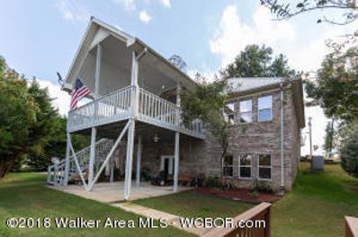 170 Lake Creek Drive, Arley, AL 35541 - #: 18-2060