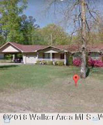 587 Old Duncan Bridge Road, Jasper, AL 35504 - #: 18-2148