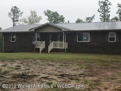 701 MacKey Boshell Rd, Jasper, AL 35501 - #: 18-2373