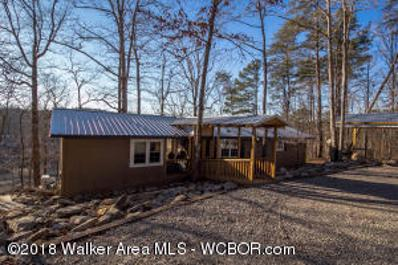 164 County Rd 3112, Double Springs, AL 35553 - #: 18-295