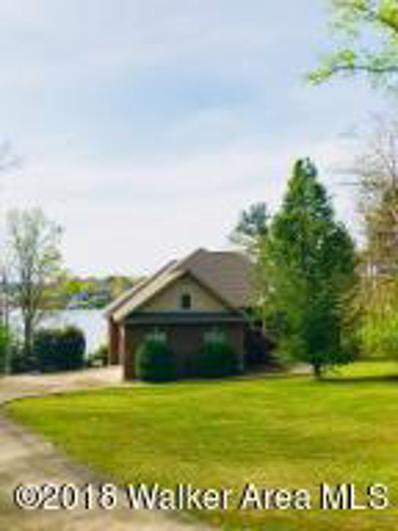 254 Lake Shore S Dr, Jasper, AL 35504 - #: 18-719