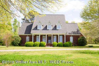 817 County Road 330, Crane Hill, AL 35053 - #: 18-803
