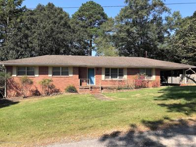 131 Beacon St, Winfield, AL 35594 - #: 19-1906