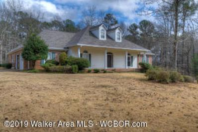 3407 Long Ridge Cir, Jasper, AL 35504 - #: 19-303