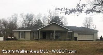 4711 Littleville Rd, Haleyville, AL 35565 - #: 19-327