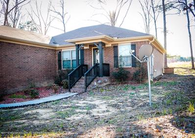 110 Dream Catcher Cir, Arley, AL 35541 - #: 19-504