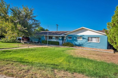 1408 E 1st Street, Mesa, AZ 85203 - MLS#: 5810244