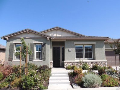 263 Harvest Hills Lane, Rio Vista, CA 94571 - MLS#: 21818869