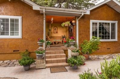 1044 Von Brandt Street, Napa, CA 94559 - #: 21825493