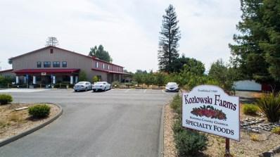 5566 Hwy 116 Highway, Forestville, CA 95436 - #: 21901305