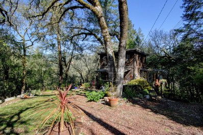 9858 Hillside Drive, Forestville, CA 95436 - #: 21906129