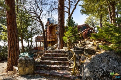 25301 Deer Path Road, Idyllwild, CA 92549 - MLS#: 18333380PS