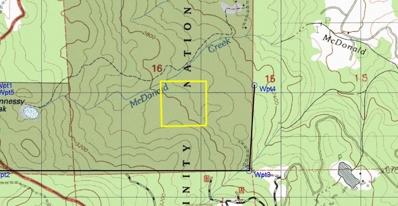 345 McDonald Creek Road, Burnt Ranch, CA 95527 - #: 248982