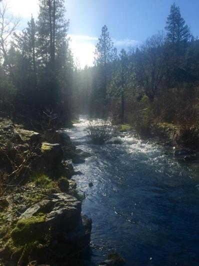 26670 Mad River Road, Ruth Lake, CA 95526 - #: 250454