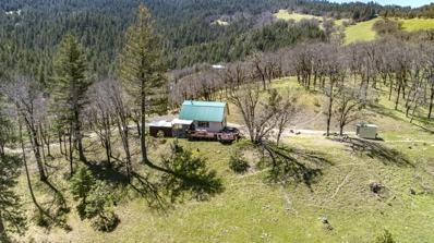 372 Branham Way, Ruth Lake, CA 95526 - #: 251163