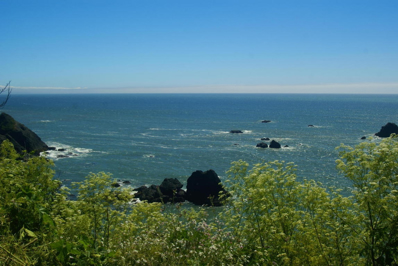 1395 Scenic Drive, Trinidad, CA 95570 - #: 251339