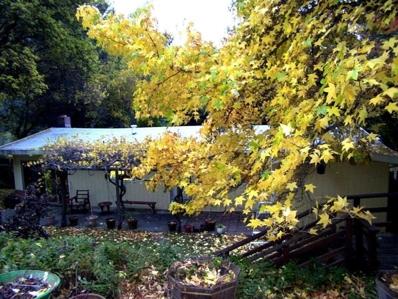 729 The Terrace Road, Willow Creek, CA 95573 - #: 251724