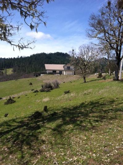 1500 Deep Hollow Road, Ruth Lake, CA 95526 - #: 251872