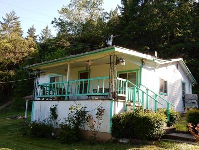 408 Panther Creek Road, Willow Creek, CA 95573 - #: 253421