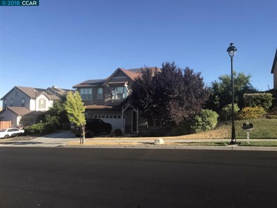 2894 Spanish Bay Dr, Brentwood, CA 94513 - MLS#: 40793730