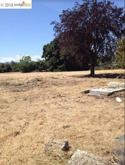 1062 Runnymede St, East Palo Alto, CA 94303 - MLS#: 40807204