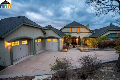 172 Oak Wood Court, Copperopolis, CA 95228 - MLS#: 40812009