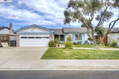 35030 Clover St, Union City, CA 94587 - MLS#: 40813581