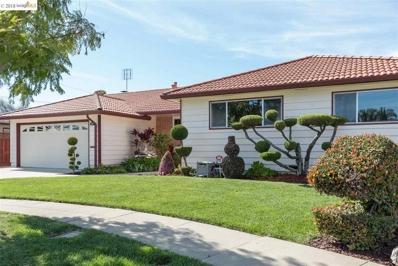 5381 Prescott Ct, Fremont, CA 94536 - MLS#: 40816389