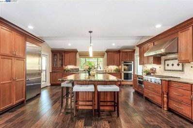 420 Pine Hill Ln, Pleasanton, CA 94566 - MLS#: 40817157