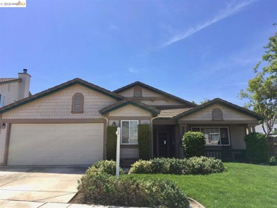14 Pinenut Ct, Oakley, CA 94561 - MLS#: 40818695