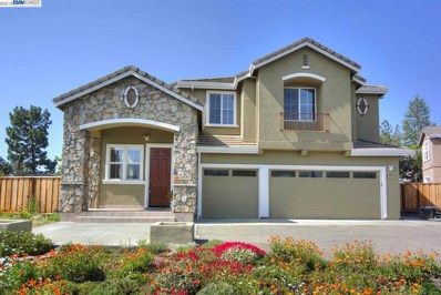 231 Meadows Ct, Fremont, CA 94539 - MLS#: 40819305