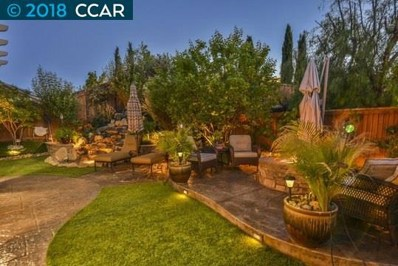 1661 Pinot Pl, Brentwood, CA 94513 - MLS#: 40819860