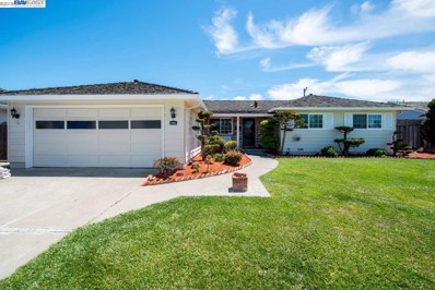 5206 Troy Ave, Fremont, CA 94536 - MLS#: 40821019