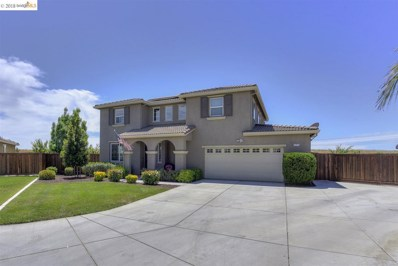 1771 Park Place Dr, Oakley, CA 94561 - MLS#: 40821411