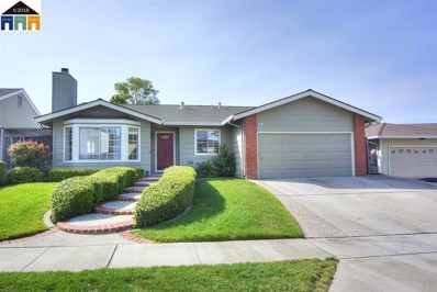 508 Gamay Ct, Fremont, CA 94539 - MLS#: 40821487