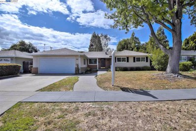 4217 Canfield Dr, Fremont, CA 94536 - MLS#: 40822366